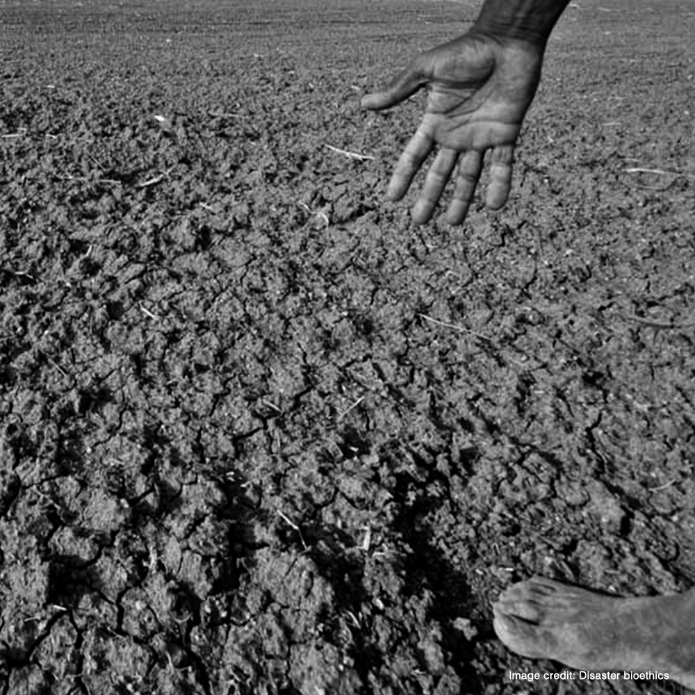 A thousand more farmers may commit suicide this year, & I can't do anything about it.