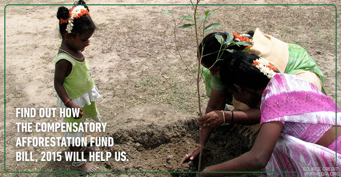 5 points to understand the Compensatory Afforestation Fund Bill, 2015